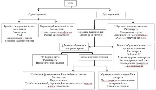 Алгоритм диагностики при периферических отеках