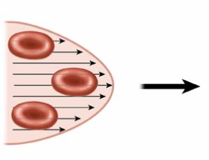 скорость кровотока
