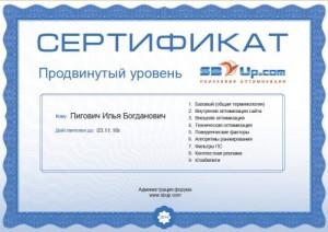 сертификат SEO специалиста
